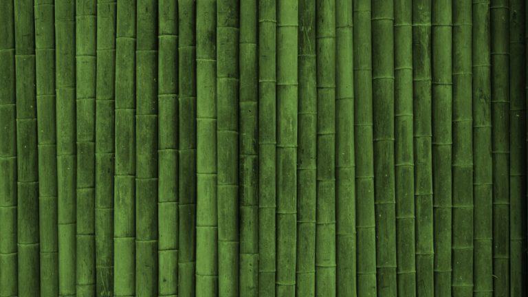 Bamboo Wallpaper 16 1920x1080 768x432