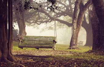 Bench Background 09 2560x1600 340x220