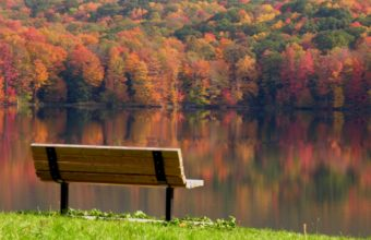 Bench Background 14 2560x1600 340x220
