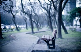 Bench Background 21 2560x1600 340x220