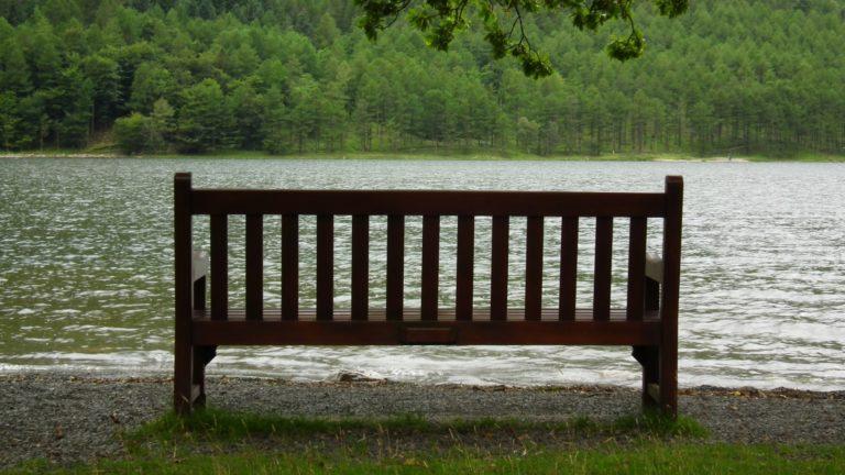 Bench Background 25 1920x1080 768x432