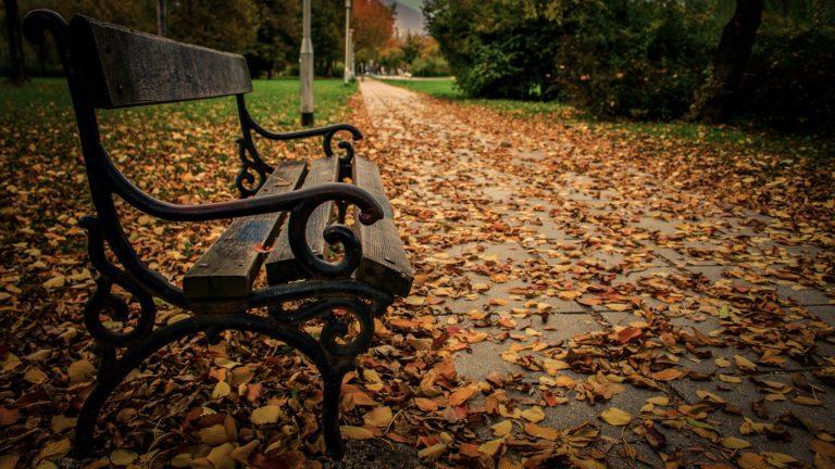 Bench Background 36 1920x1080 768x432