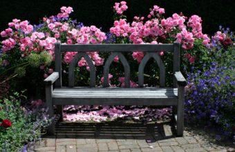 Bench Background 50 3285x2000 340x220