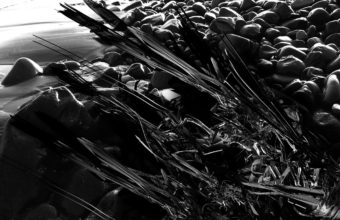 Black Wallpapers 04 1280 x 1024 340x220