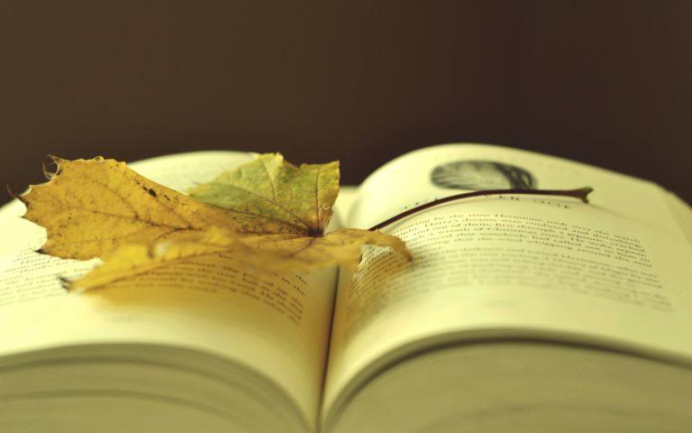 Book Wallpaper 04 2560x1600 768x480