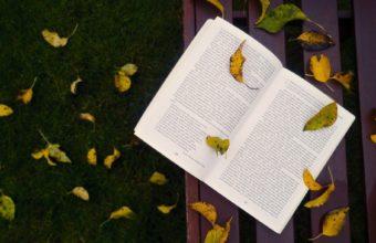 Book Wallpaper 12 1920x1176 340x220