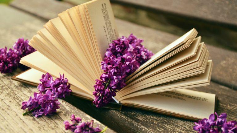 Book Wallpaper 37 3840x2160 768x432
