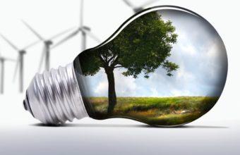 Light Bulb Art Image 1336x768 340x220