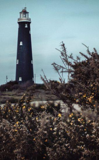 Lighthouse Phone Wallpaper 1080x2340 022 340x550
