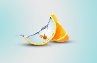 Orange Artwork 3840x2160 340x220