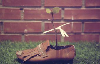 Shoes Plants Grasses 3840x2160 340x220