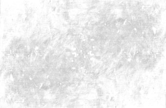 White Wallpapers 31 2635 x 1989 340x220