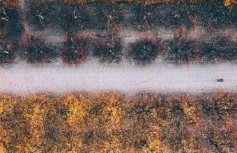 1440x2960 HD Wallpaper 059 340x220
