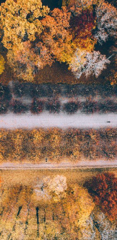1440x2960 HD Wallpaper 059 380x781