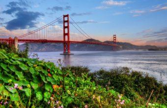 Golden Gate Wallpaper 20 2560x1600 340x220