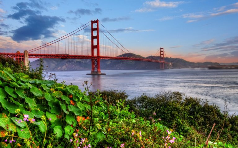 Golden Gate Wallpaper 20 2560x1600 768x480