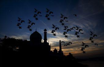 Taj Mahal Wallpaper 04 2193x1416 340x220