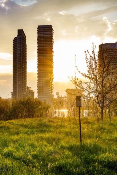 Building Cityscape Grass Sunbeam Sunrise Ul Wallpaper 640 x 960 380x570