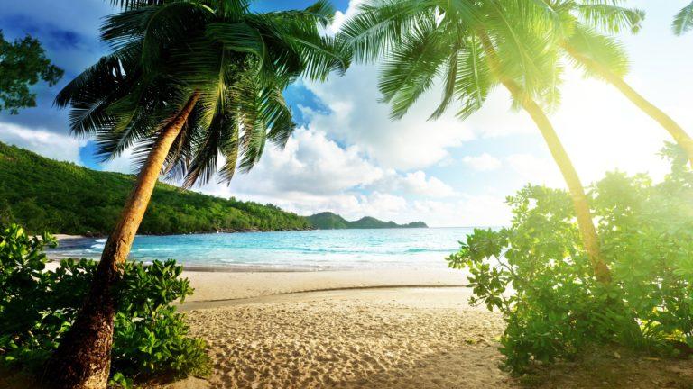 Tropical Wallpaper27 3840x2160 768x432