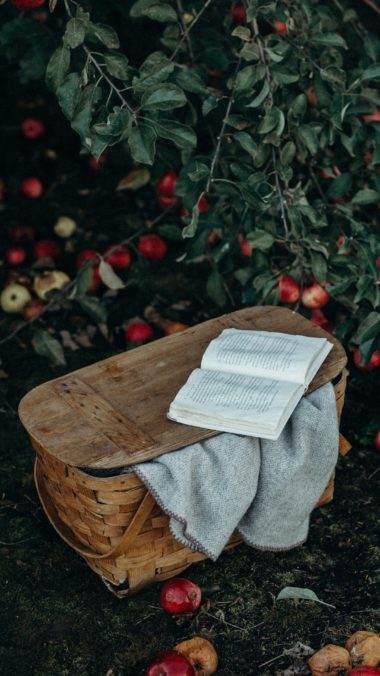 Basket Book Apples Harvest Wallpaper 2160x3840 380x676
