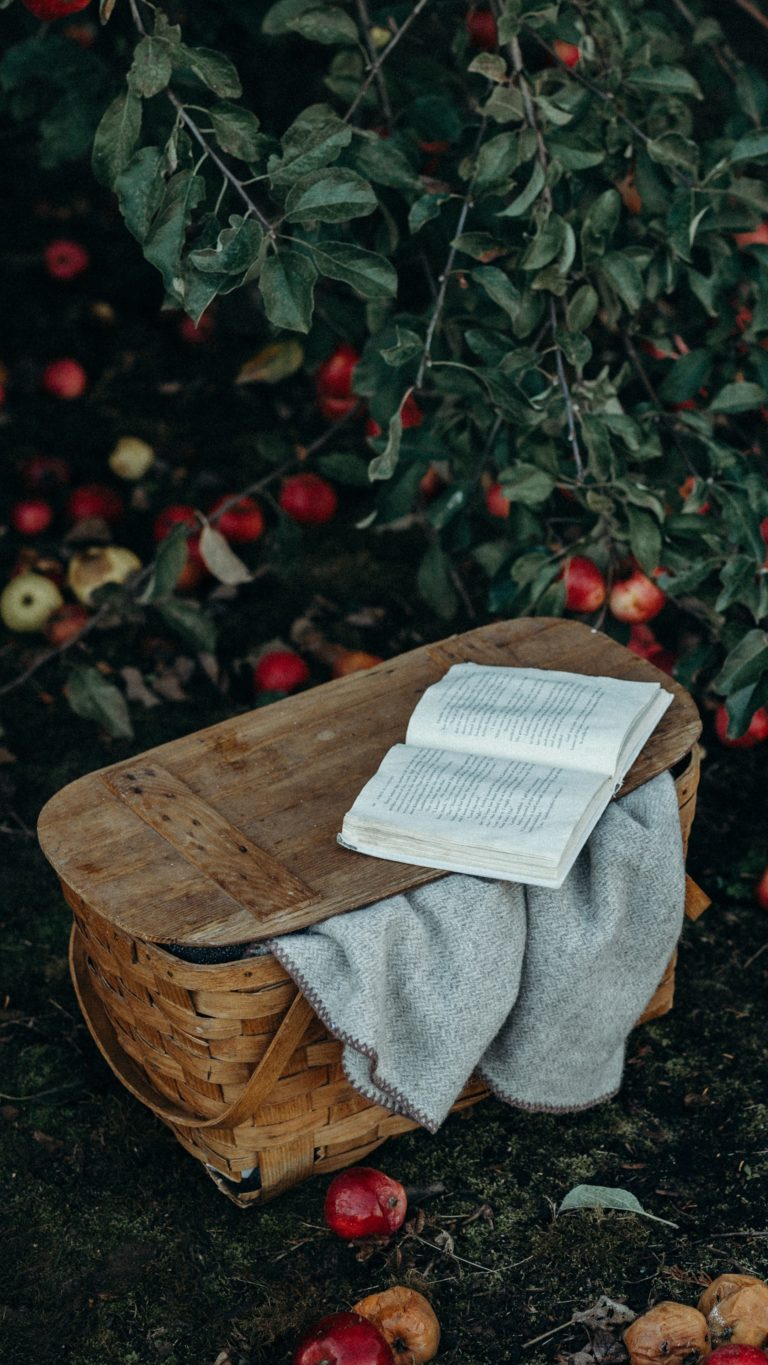 Basket Book Apples Harvest Wallpaper 2160x3840 768x1365