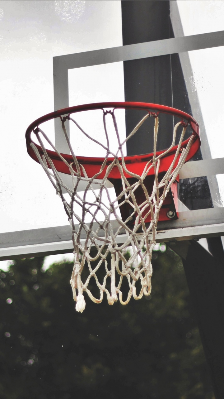 Basketball Shield Basketball Mesh Wallpaper 720x1280