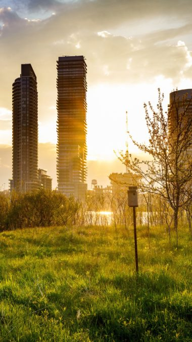 Building Cityscape Grass Sunbeam Sunrise Ul Wallpaper 2160x3840 380x676