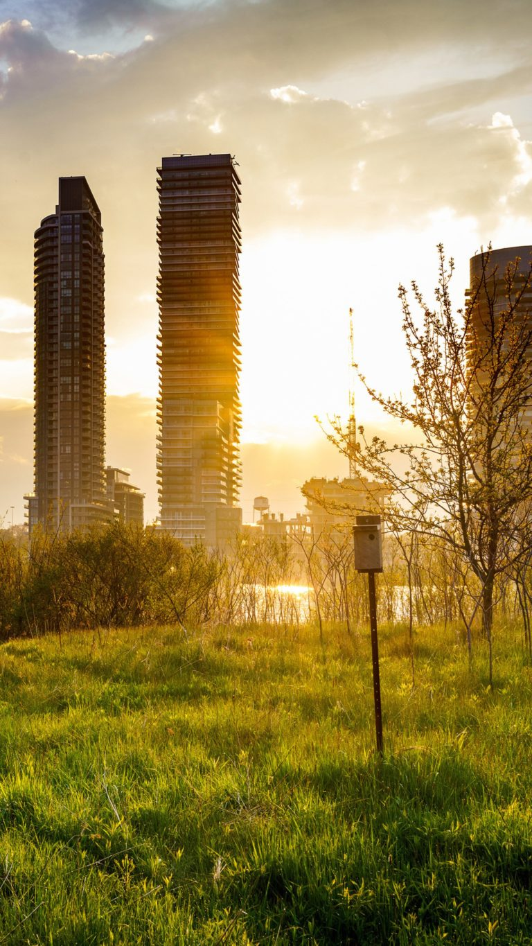 Building Cityscape Grass Sunbeam Sunrise Ul Wallpaper 2160x3840 768x1365