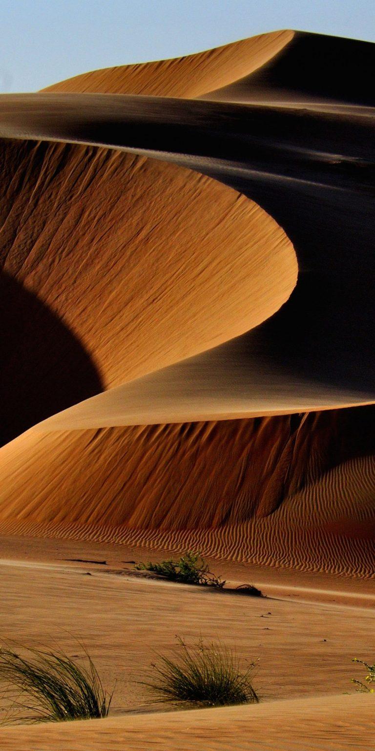 Desert Wallpaper 1080x2160 768x1536