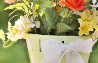 Flowers Pot Wallpaper 720x1280 340x220