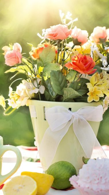 Flowers Pot Wallpaper 720x1280 380x676