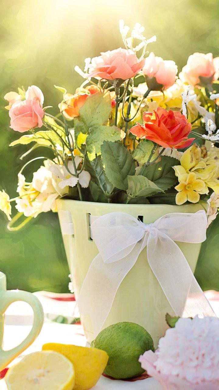 Flowers Pot Wallpaper 720x1280