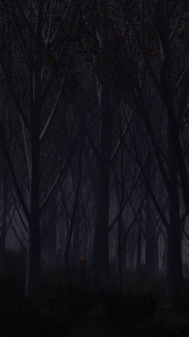 Forest Trees Background Dark 380x676