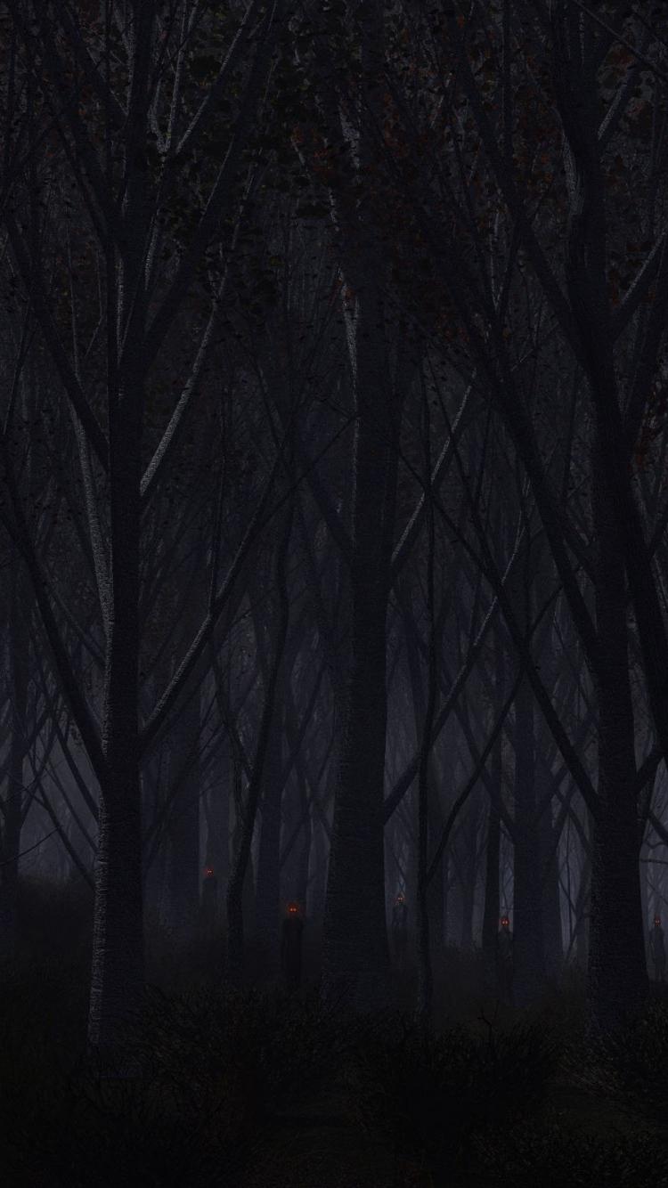 Forest Trees Background Dark