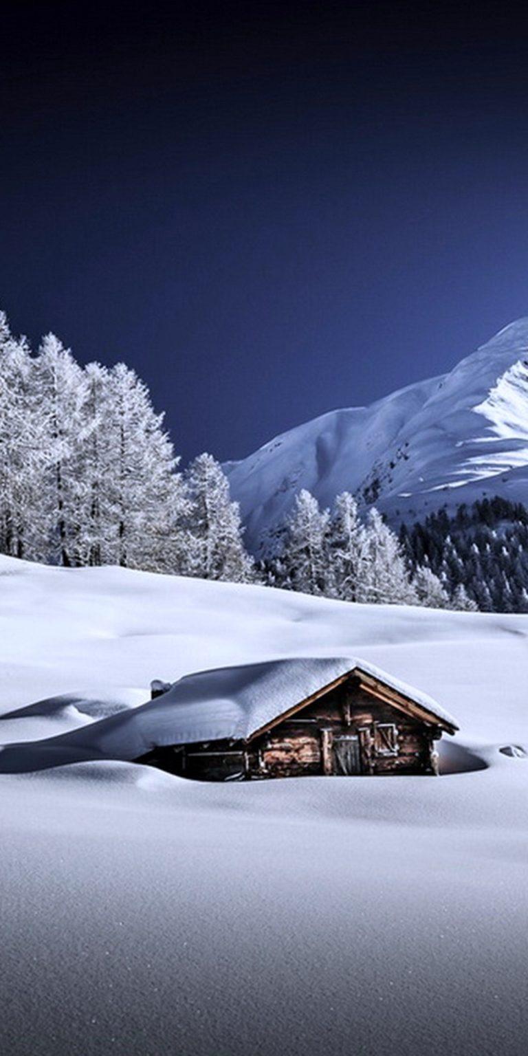 Frozen Winter Wallpaper 1080x2160 768x1536