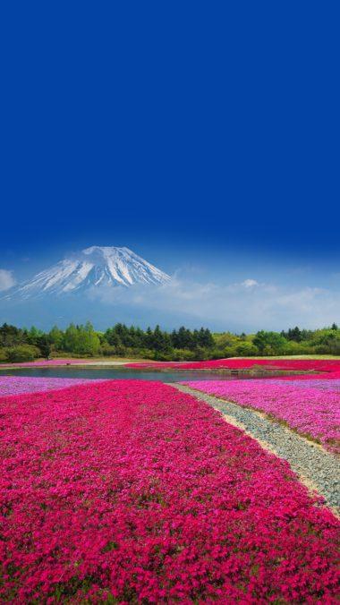 Fuji Wallpaper 1080x1920 380x676