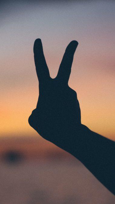 Hand Gesture Fingers Wallpaper 2160x3840 380x676