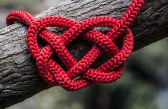 Heart Rope Spelled Tree Wallpaper 2160x3840 340x220