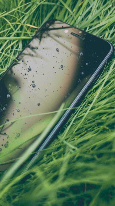 Iphone Water Drops Grass 14 Wallpaper 2160x3840 380x676