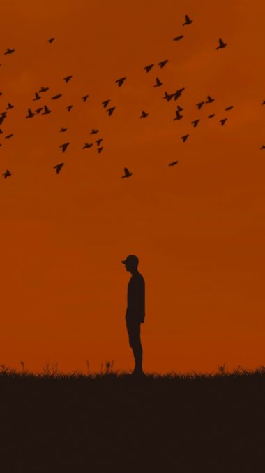 Man Silhouette Birds Wallpaper 720x1280 380x676