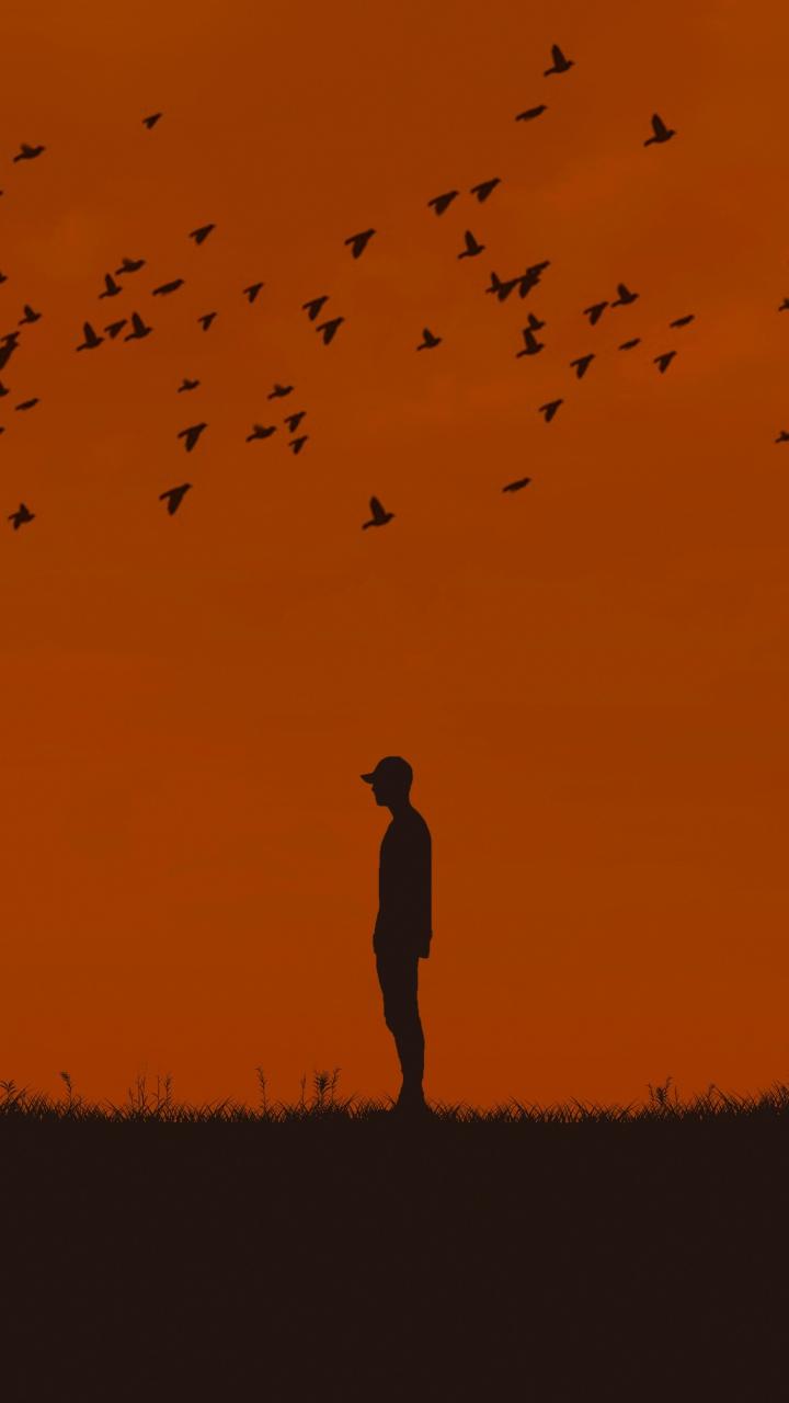 Man Silhouette Birds Wallpaper 720x1280