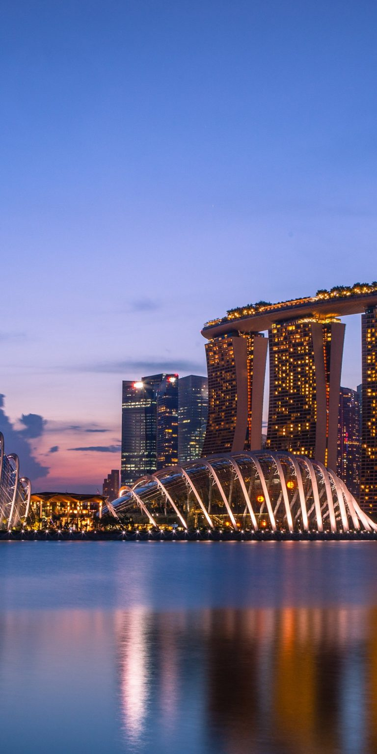 Marina Bay Sands Wallpaper 1080x2160 768x1536
