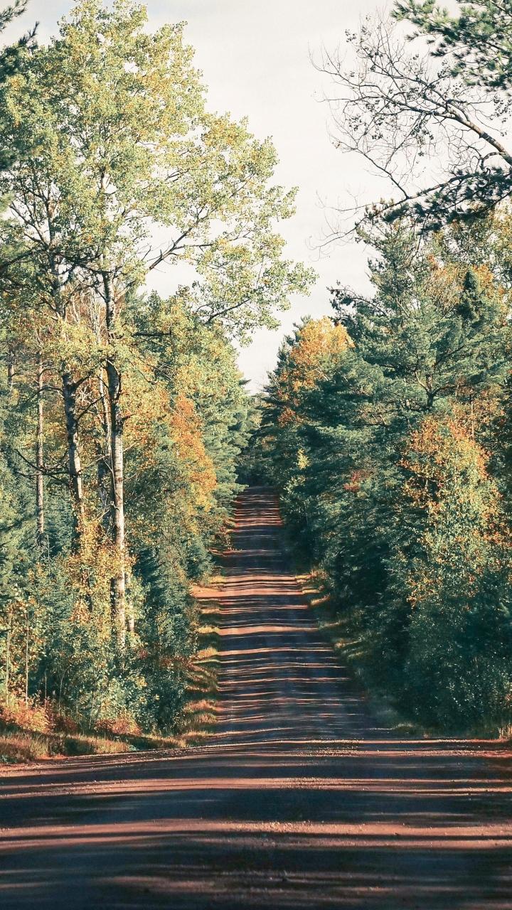 Road Trees Shadow Wallpaper 720x1280