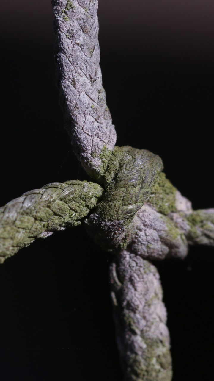 Rope Knot Moss Wallpaper 720x1280
