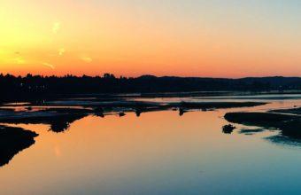 Sea Sunset Shore Birds Ab Wallpaper 1080x1920 340x220