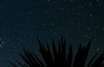 Starry Sky Stars Space Wallpaper 2160x3840 340x220