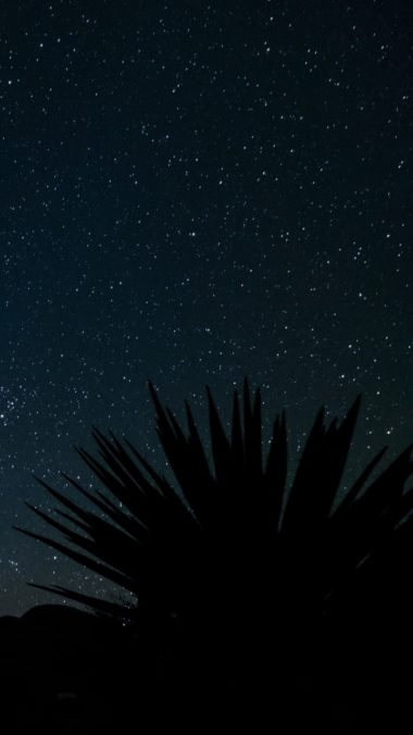 Starry Sky Stars Space Wallpaper 720x1280 380x676