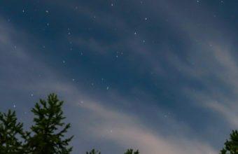 Starry Sky Trees Sky Wallpaper 2160x3840 1 340x220