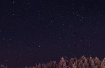 Stars Trees Night Dark Sky Ym Wallpaper 2160x3840 340x220