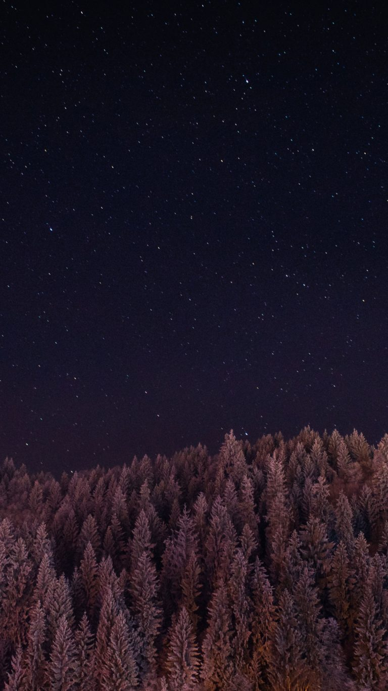 Stars Trees Night Dark Sky Ym Wallpaper 2160x3840 768x1365
